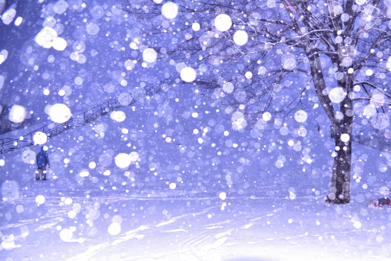 1月 雪ふわり 岡見至朗
